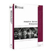 赛贝斯 ASE 企业版 for Windows/Linux/Mac/Solaris x86(1个CPU)