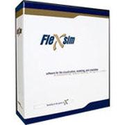 FleXsim Flexsim 4.0