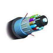 安普 4芯铠装光缆