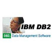 IBM Informix Dynamic Server 企业版V9.4(1用户)
