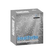 拓林思 GreatTurbo Enterprise Server 10.5 for Itanium2 Golden Edition