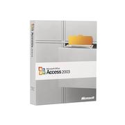 微软 Access 2003(中文标准版)
