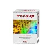 中文之星 XP(标准版)
