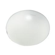 飞利浦 亮彩X型(纯白)吸顶灯 32W