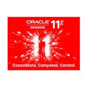 甲骨文 Oracle 11g 标准版 1个CPU