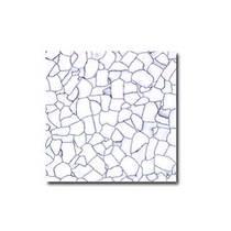 祥和 防静电贴面全钢地板(600×600×30-35)产品图片主图