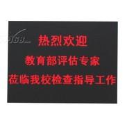 鑫晨彩 半室外5.0(PH7.62mm)双基色显示屏