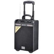 新科 天籁7号 双6.5寸低音 拉杆电瓶音箱