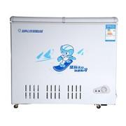 友田 BD/BC-288H 288升冷藏冷冻转换柜冰柜 冷柜