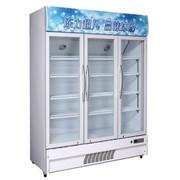 冰熊 LC-980 980升三门立式展示柜冷藏柜陈列柜点菜柜保鲜柜