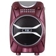 索爱 SA-X6 有源音箱 (红色)