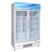 冰熊 LC-630 630升两门立式展示柜 冷藏柜 陈列柜 点菜柜