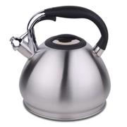 HUANXIPO 304不锈钢烧水壶4.5L大容量加厚复底彩色煮水壶鸣笛燃气电磁炉通用 不锈钢色 4.5升水壶