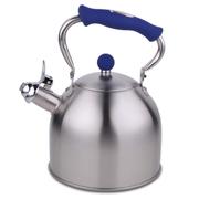 HUANXIPO 德国工艺加厚304不锈钢烧水壶3L升复底煮水壶鸣音壶燃气电磁炉通用 蓝手柄 3升水壶