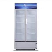 星星 LSC-458BW 458升商用展示柜立式冷柜单温冷藏冰柜