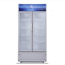 星星 LSC-458BW 458升商用展示柜立式冷柜单温冷藏冰柜产品图片主图