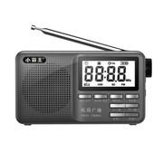 小霸王 便携式插卡音箱PL-790 FM收音机 迷你小音响老人晨练外放MP3音乐播放器随身听 蓝色