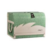 安程 Anjuny 汽车收纳箱系列 时尚款 车用收纳箱 绿色