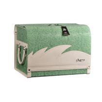 安程 Anjuny 汽车收纳箱系列 时尚款 车用收纳箱 绿色产品图片主图