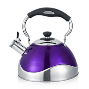 仁品 RENPIN新款创意鸣笛不锈钢烧水壶 煤气电磁炉3L 紫罗兰