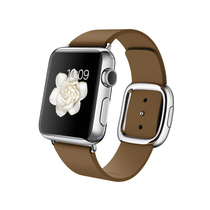 苹果 Apple Watch 智能手表(棕色/38毫米表壳/现代风扣式表带)产品图片主图