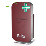 SKG 4210家用空气净化器 除甲醛雾霾PM2.5杀菌 空气净化器