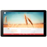 蓝魔 i100pro 10.6英寸平板电脑(Intel3735F/2G/64G/1920×1080/Android 4.4/银色)
