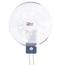 骆驼 FS-40CL 16寸壁扇 5片扇叶壁扇/电风扇产品图片主图