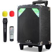 索爱 SA-T18 便携式移动拉杆户外音响 大功率电瓶插卡广场舞音箱 (黑色)