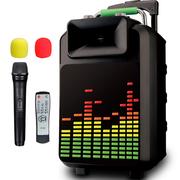 索爱 SA-T20 便携式移动拉杆户外音响 大功率电瓶插卡广场舞音箱