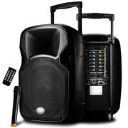 先科 天韵3号 12寸拉杆音箱广场舞户外音响 便携式扩音器大功率带无线麦克风话筒