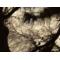 三星 Galaxy Camera EK-GC200 智能数码安卓相机 黑色产品图片4