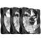 乔思伯 FR-531 12CM机箱风扇 RGB风扇 三风扇套装 (12CM/LED RGB 256色发光风扇)产品图片3