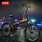 普莱德 电动滑板车折叠便携48V锂电池电动车 男女通用电瓶车成人代步车代驾电单车 旗舰版 20寸36V 哑光黑(辐条轮)产品图片4