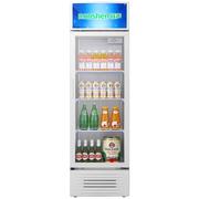 容声 SC-280LE 展示柜 冷藏立式冰柜 大容积商用立式冷柜 饮料饮品保鲜柜 单门陈列柜 玻璃门冰箱
