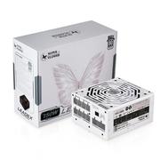 振华 额定750W LEADEX P750W 电源 (80PLUS白金牌/全模组电源/主动式PFC)
