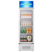 容声 SC-240LE 展示柜 冷藏立式冰柜 大容积商用立式冷柜 饮料饮品保鲜柜 单门陈列柜 玻璃门冰箱