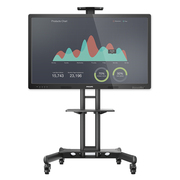 飞利浦 BDL5530QT 55英寸智能会议电子白板 会议平板 触摸一体机(含移动支架)
